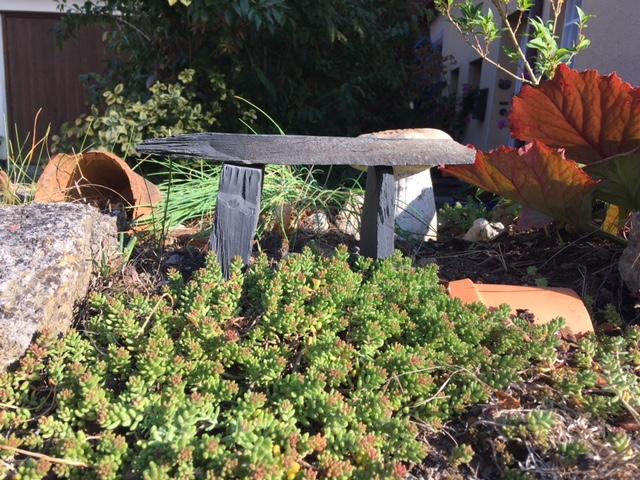 Herbstzeit-Erntezeit